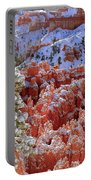 Pine Tree In Bryce Canyon Portable Battery Charger