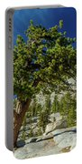 Pine Tree In Yosemite Portable Battery Charger
