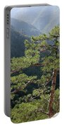 Pine Tree On Mountain Landscape Portable Battery Charger