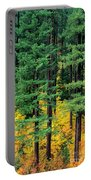 Pine Trees In Autumn Portable Battery Charger