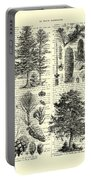 Pine Trees Study Black And White  Portable Battery Charger