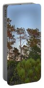 Pine Trees Waiting For Twilight Portable Battery Charger