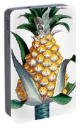 Pineapple, 1789 Portable Battery Charger