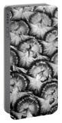 Pineapple Skin - Bw Portable Battery Charger