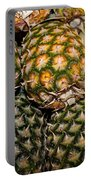 Pineapples And Melons Portable Battery Charger