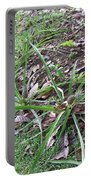 Pineapples Growing In The Woods Portable Battery Charger