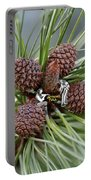 Pinecone Tull Portable Battery Charger