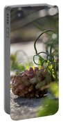Pinecones And Wild Onions  Portable Battery Charger