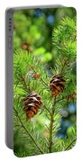 Pinecones Portable Battery Charger