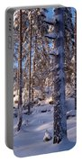 Pines Portable Battery Charger