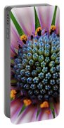 Pink African Daisy Detail Portable Battery Charger