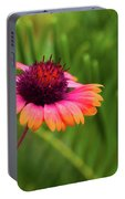Pink And Orange Wild Daisy Portable Battery Charger