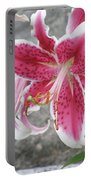 Pink And White Stargazer Lily In A Garden Portable Battery Charger