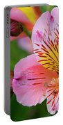 Pink And Yellow Flora Portable Battery Charger
