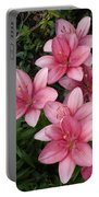 Pink Asiatic Lilies 2 Portable Battery Charger