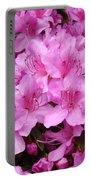Pink Azaleas Summer Garden 6 Azalea Flowers Giclee Art Prints Baslee Troutman Portable Battery Charger