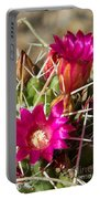 Pink Barrel Cactus Flowers Portable Battery Charger