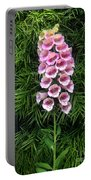 Pink Bell Flowers. Foxglove 02 Portable Battery Charger