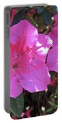 Pink Bevy Of Beauties Portable Battery Charger