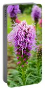 Purple Blazing Star 01 Portable Battery Charger