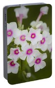 Pink Bright Eyes Garden Phlox Portable Battery Charger