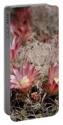 Pink Cactus Flowers 2 Portable Battery Charger