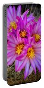 Pink Cactus Flowers Square  Portable Battery Charger