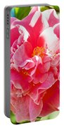 Pink Camellia At Pilgrim Place In Claremont-california  Portable Battery Charger