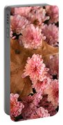 Pink Chrysanthemums With Pin Oak Leaf Portable Battery Charger