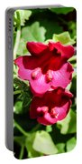 Pink Creeping Gloxinia Portable Battery Charger