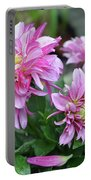 Pink Dahlia Flowers Portable Battery Charger