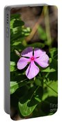 Pink Downy Phlox Wildflower Portable Battery Charger