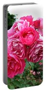Pink Floribunda Roses Portable Battery Charger