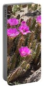 Pink Flowers In The Desert Portable Battery Charger