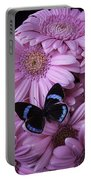 Pink Gerbera Daises And Butterfly Portable Battery Charger