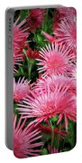 Pink Gerbera Heaven Portable Battery Charger