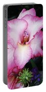 Pink Gladiola In Peru Portable Battery Charger