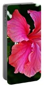 Pink Hibiscus At Pilgrim Place In Claremont-california- Portable Battery Charger