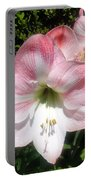 Pink Hippeastrum 01 Portable Battery Charger