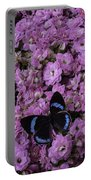 Pink Kalanchoe And Black Butterfly Portable Battery Charger
