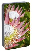 Pink King Protea Flowers Portable Battery Charger