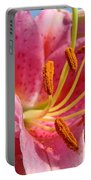 Pink Lilies Art Prints Lily Flowers 3 Giclee Artwork Baslee Troutman  Portable Battery Charger