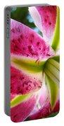 Pink Lily Summer Botanical Garden Art Prints Baslee Troutman Portable Battery Charger