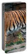 Pink Nosed Tiger Portable Battery Charger