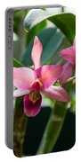 Pink Orchids - Exotic Tropical Glow Portable Battery Charger
