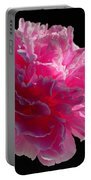 Pink Peony On A Black Background Portable Battery Charger