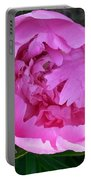 Pink Peoony In Bloom Portable Battery Charger
