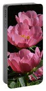 Pink Perspective 0552 Portable Battery Charger