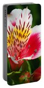 Pink Peruvian Lily 1 Portable Battery Charger