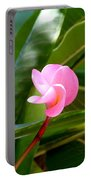 Pink Plumeria In Bloom Portable Battery Charger
